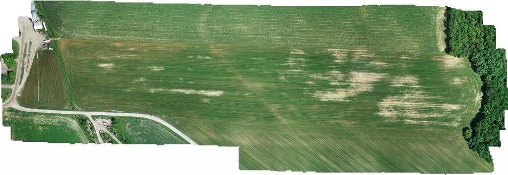 overhead shot of a farmers field
